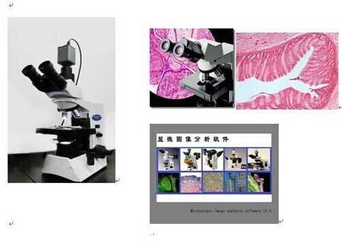 中国农业大学选购我公司数码生物显微镜