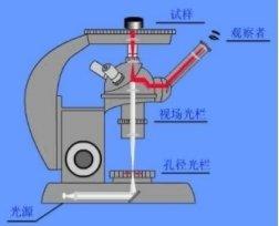 倒置金相显微镜结构图