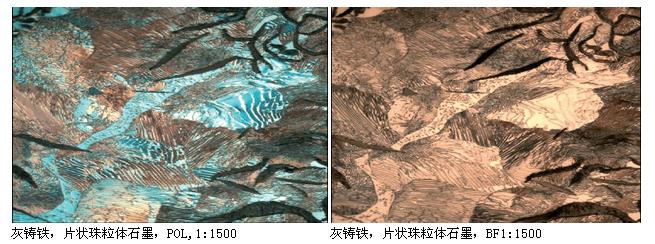 徕卡 DMI5000M倒置金相显微镜--444