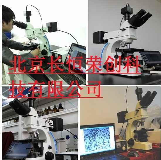 金相数码显微镜UMT-LV320-1