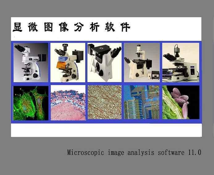 Image Analysis System 11显微镜图像分析软件