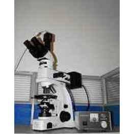 偏光数码显微镜UPT-LV320