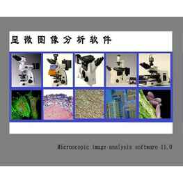 Image Analysis System 11.0图像分析软件
