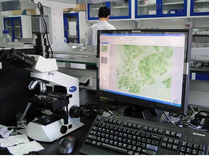 植物叶绿体观察显微镜CX21-CV320
