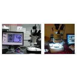PBC电路板观察国产显微镜