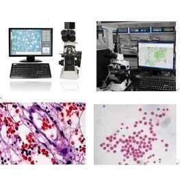 化妆品颗粒观察检测奥林巴斯显微镜