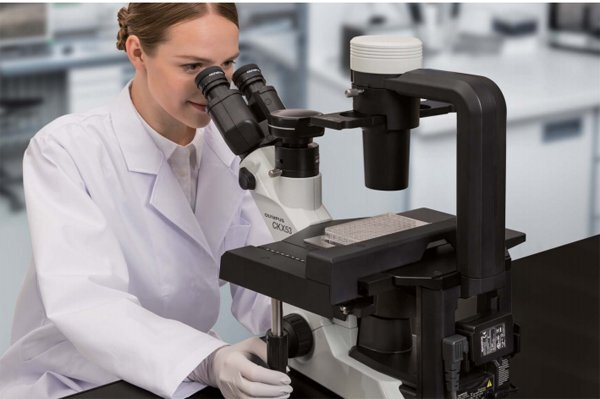 倒置相差显微镜CKX53